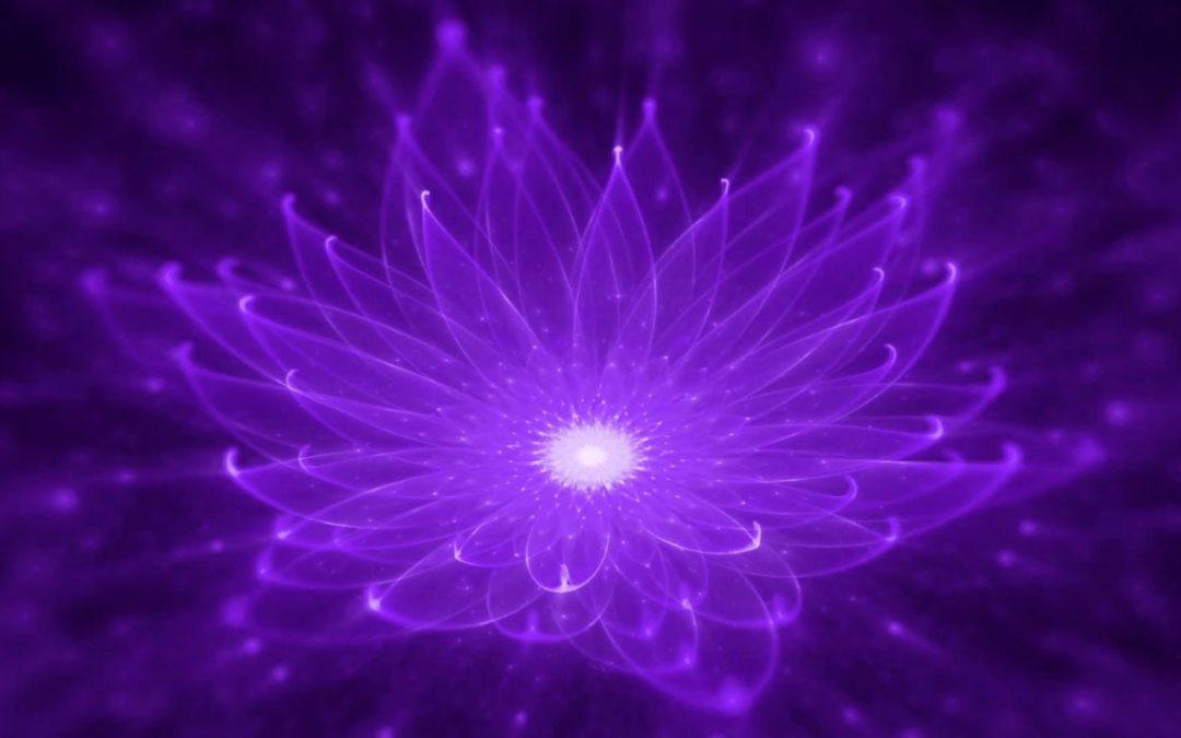 Transmutação – Violeta é sua Cor